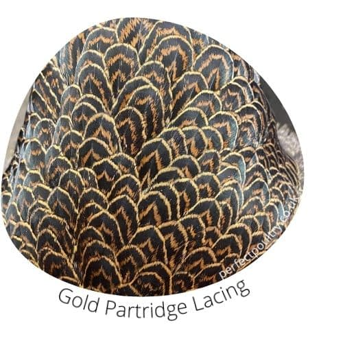 Gold Partridge Lacing